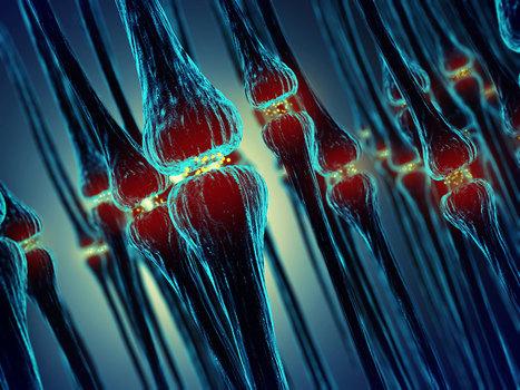 Un pas de géant pour la robotique : ces synapses artificielles ont la puissance du cerveau humain   Vous avez dit Innovation ?   Scoop.it
