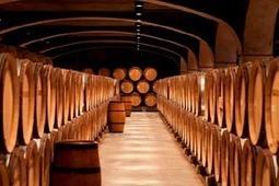 Vins de Bourgogne : maintien des ventes sur les marchés matures ... - Vitisphere.com | Le vin quotidien | Scoop.it
