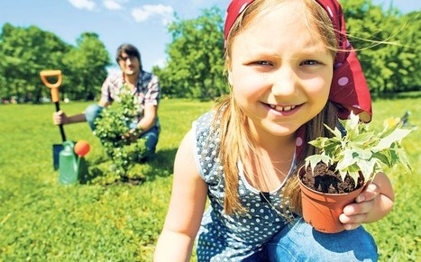Horticultural therapy: 'Gardening makes us feel renewed inside' - Telegraph | Mental Health News | Scoop.it