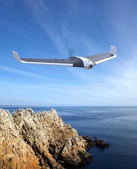 O Parrot DISCO será un dron de ala fixa | TECNOLOGÍA_aal66 | Scoop.it