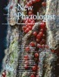 Batstone, Dutton, Wang, Yang & Frederickson (2016). The evolution of symbiont preference traits in the model legume Medicago truncatula. New Phytologist | Biological Markets: the role of partner choice in cooperation and mutualism | Scoop.it