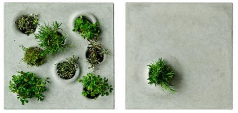 grey to green vegetation stones by caroline brahme | Ébène SOUNDJATA | Scoop.it