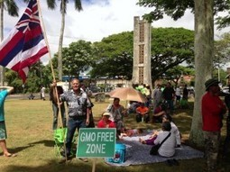 Pau Hana Friday for October 18 | Kauai The Garden Isle | Scoop.it
