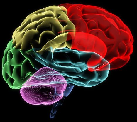 Slideshow - Leading Causes of Traumatic Brain Injury | Snyder & Wiles, PC, Personal Injury | Scoop.it