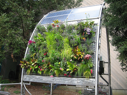 Vertical Gardening For Confined Spaces - Project: Greenify | Guide to Going Green in Your Home, Office & Life | The Glory of the Garden | Scoop.it