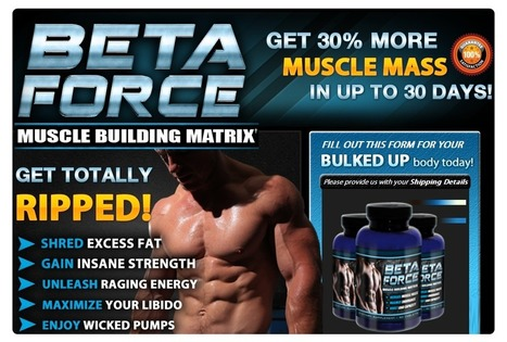 Beta Force Muscle Building Matrix Review | Beta Force Muscle Building | Scoop.it
