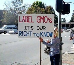"A DIRTY BUSINESS: FDA Removes 1 Million Signatures from GMO ""Just Label It"" Campaign 