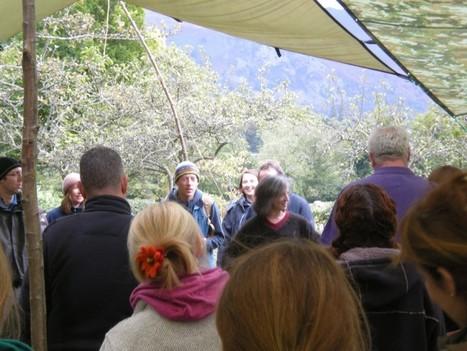 Answering the call of the wild: Croydon Forest School - The Croydon Citizen | Bush School | Scoop.it