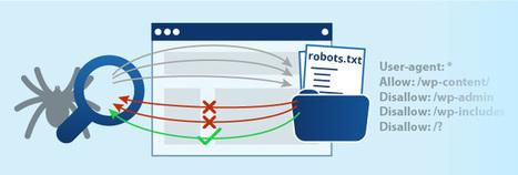 Guia completa sobre el robots.txt - Jose Antonio Neto | Social Media | Scoop.it
