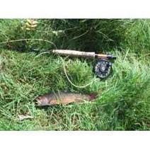 FLY FISHING COURSES | fly fishing | Scoop.it