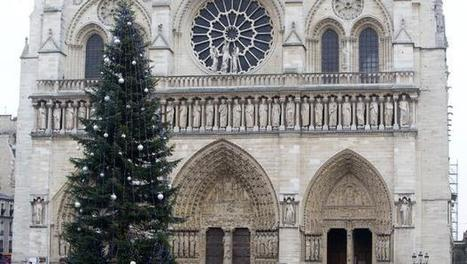 Unusual patron behind Christmas tree outside Paris' Notre Dame | Christmas Trees and More | Scoop.it