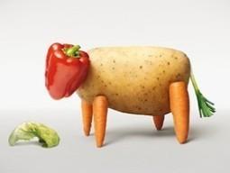 [Chronique] – Mangez-vous des animaux ?   Expérience durable   Autres Vérités   Scoop.it