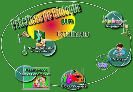 practicas | Prácticas laboratorio | Scoop.it