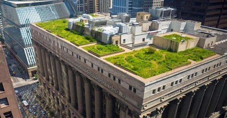 New French Law Passed: All New Rooftops Must Be Covered With Plants Or Solar Panels   Peer2Politics   Scoop.it