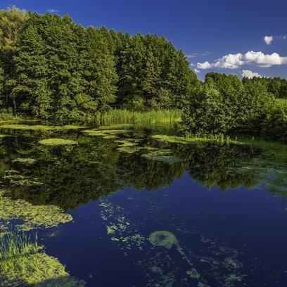 9 Tumblrs Every Environmentalist Should Follow | PlanetNews | Scoop.it
