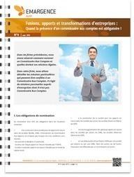 Fusions, apports et transformations d'entreprises : Quand la présence d'un commissaire aux comptes est obligatoire ! Groupe EMARGENCE | Frédéric Gouvet | Scoop.it