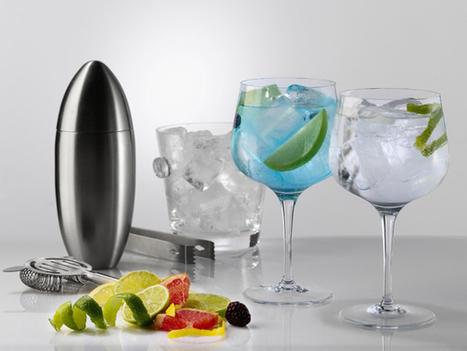 Los 8 elementos imprescindibles para un gin tonic perfecto | Cosas que interesan...a cualquier edad. | Scoop.it