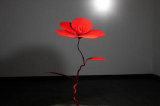 Artist Sun-Hyuk Kim | reseau artistique | Scoop.it