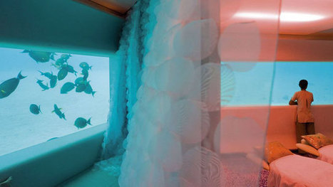 Spa Takes You Under the Sea | Radio Show Contents | Scoop.it