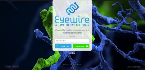 Eyewire: A Computer Game to Map the Eye | Crowd-data & Content | Scoop.it