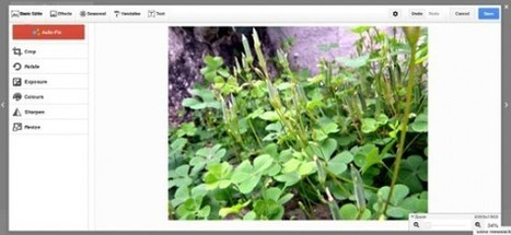 How to Edit Photos on Google Plus | Google | Asked and Answered | ALL OF GOOGLE PLUS WITH PHILIPPE TREBAUL ON SCOOP.IT | Scoop.it