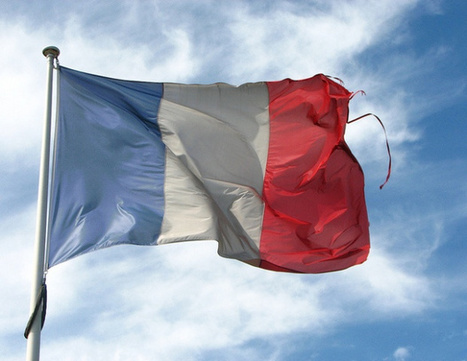 France Launches Google-style Plan To Scan And Sell Out-of-Print Books | International ReLIRE survey | Scoop.it