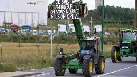 Pourquoi les Français aiment tant leurs agriculteurs - Le Figaro | Le Fil @gricole | Scoop.it