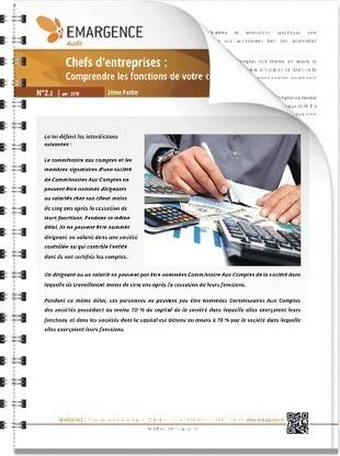 Chefs d'entreprises : Comprendre les fonctions de votre Commissaire Aux Comptes (deuxième partie) | Groupe EMARGENCE | Frédéric Gouvet | Scoop.it