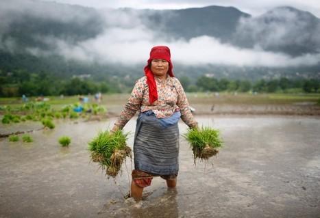 Why gender equality at work must be top development priority - Reuters AlertNet | Gender Inequality | Scoop.it