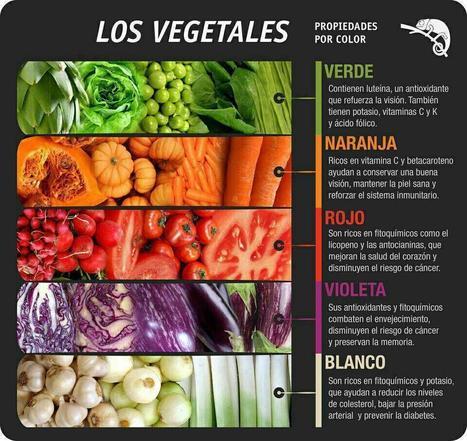 Twitter / EcoMobileTour: Propiedades de los vegetales ...   EcoLegendo   Scoop.it