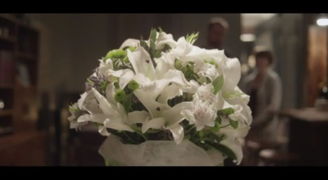 Artesaniaflorae   Artesania vegetal i art floral   artesaniaflorae   Scoop.it