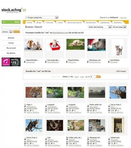 Une banque de photos gratuites(400.000), Stock Xchng | Ballajack | le foyer de Ticeman | Scoop.it