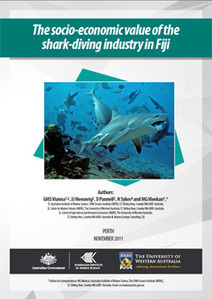 Shark-Dive Tourism in Fiji Worth US$42.2 Million a Year - Pew Environment Group | Fiji EDP | Scoop.it