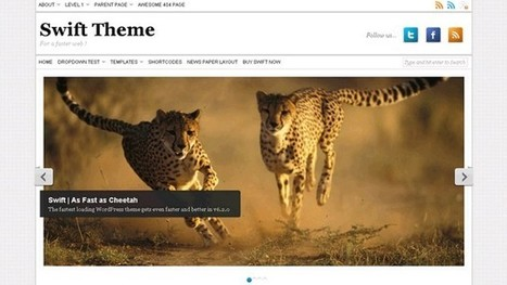 10 Best Themes with built in SEO - WP Smashing Themes | Free & Premium WordPress Themes | Scoop.it