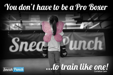 Why EVERYONE Should be Boxing Training - Learn Boxing Online | Fitness and Training | Scoop.it