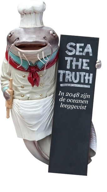 De plastic soep « Sea the Truth | Plastic Soep | Scoop.it