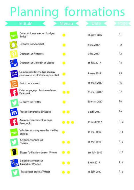 Formations réseaux sociaux : découvrez notre programme 2017 ! | Usages professionnels des médias sociaux (blogs, réseaux sociaux...) | Scoop.it