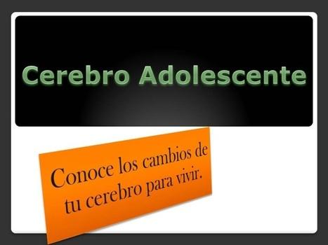 Cerebro Adolescente: ¿Por qué a los adolescentes les cuesta concentrarse?   Coaching para Educadores   Scoop.it