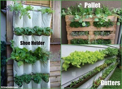 More vertical farming!   Facebook   Vertical Farm - Food Factory   Scoop.it