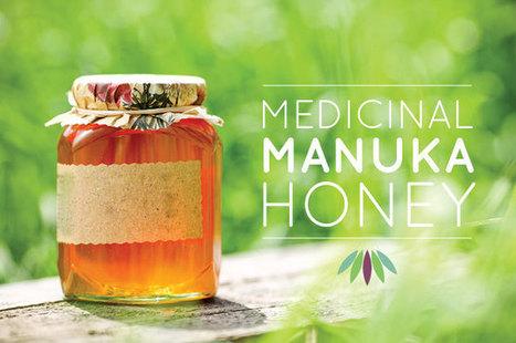 Medicinal Manuka Honey - Live to 110 | Healing With Movement Pilates | Scoop.it