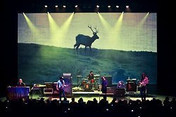 PHOTO: Band of Horses in concert, Dallas | SongsSmiths | Scoop.it