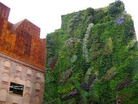 Arquirehab: Jardines verticales. Ecoeficiencia en fachadas. | Jardines Verticales y azoteas verdes. | Scoop.it