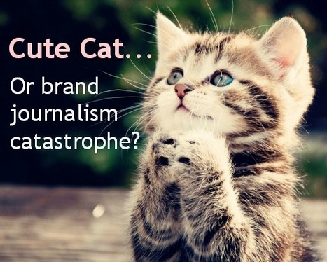 Future of Brand Journalism: Cute Cats or Catastrophe? | The PR Coach | Veille innovations médias english | Scoop.it