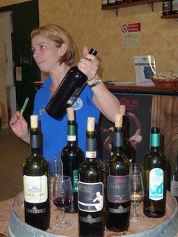 Cantina Colli Ripani: 'Wine is an Art' | Wines and People | Scoop.it