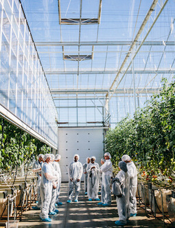 10 Educational Programs Helping to Support the Growth of Indoor Agriculture | Vertical Farm - Food Factory | Scoop.it