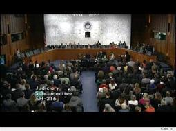 Panel At US Senate Hearing Appears Against Stand Your Ground Laws | politics | Scoop.it
