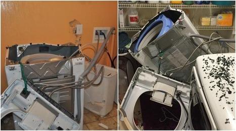 After Galaxy Note 7, Samsung Recalls Millions of Washing Machines | ViaVirtuosa Blog | Scoop.it