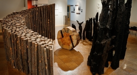 'Fires of Change' Exhibit Brings Illumination | UANews | CALS in the News | Scoop.it