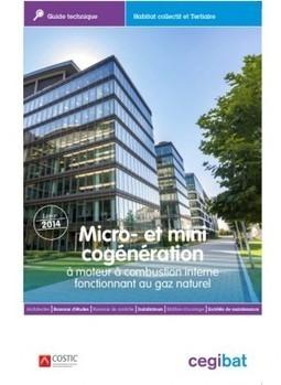 Micro et mini cogénération à moteur à combustion interne fonctionnant au gaz naturel (Cegibat, 29/10/14) | Les écogénérateurs ou chaudières à micro cogénération gaz, l'avenir du chauffage ? | Scoop.it