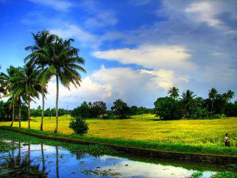 Kerala Honeymoon Destinations | Le Tourister | Scoop.it